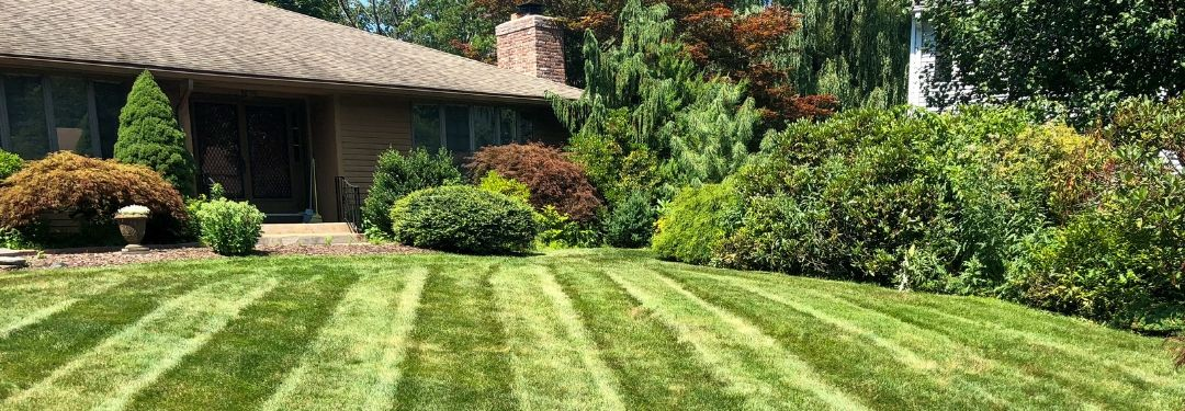 About JS Landscaping West Hartford Lawn Services