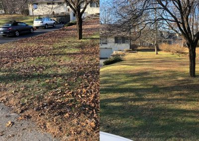 Before and After Leaf Pickup Service