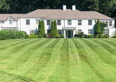 Estate Lawn Mowing