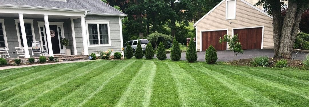 Lawn Care Program Service West Hartford CT
