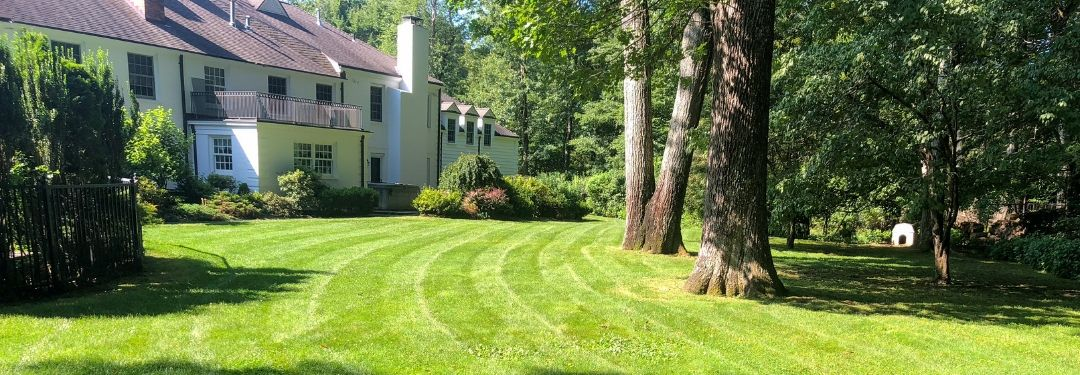 Lawn Mowing Hartford CT