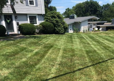Lawn and Landscape Maintenance Services