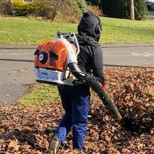 Leaf Blowing Service
