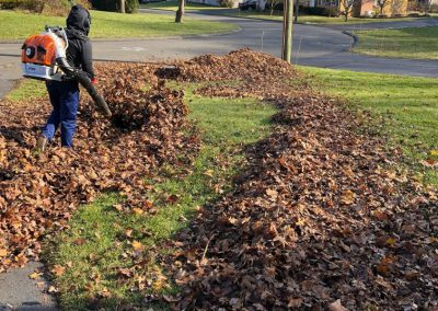 Leaf Collection Service