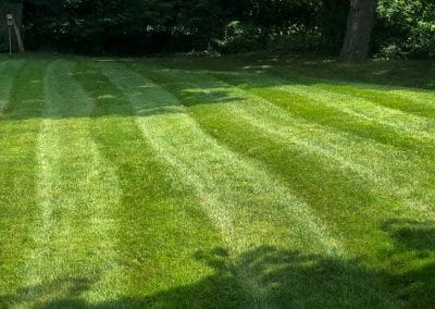 Mower Stripes in Lawn