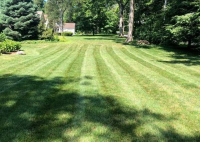 Professional Lawn Mowing Stripes