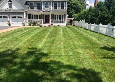 Well Maintained Lawn and Landscape
